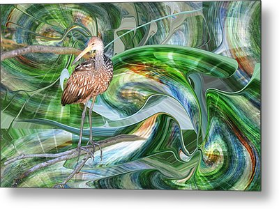 Limpkin Studying Time Flow Metal Print