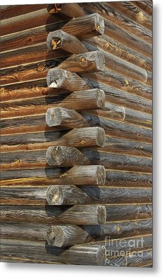 Lincoln Logs Metal Print by Skip Willits