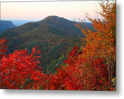 Metal Print featuring the photograph Linville Gorge by Kathryn Meyer