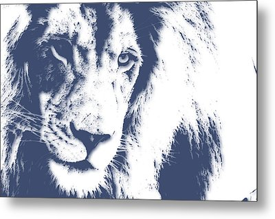 Lion 4 Metal Print by Joe Hamilton