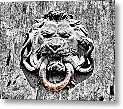 Lion And The Snake Metal Print