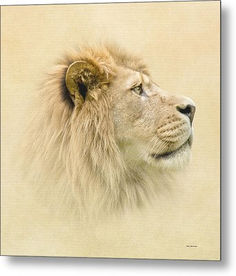 Metal Print featuring the photograph Lion II by Roy  McPeak