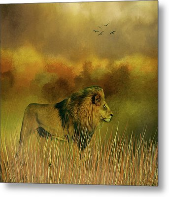 Lion In The Mist Metal Print by Diane Schuster