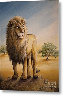Lion Of Africa Metal Print