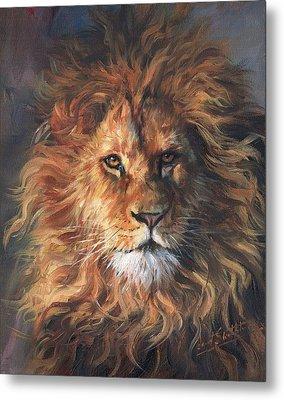 Lion Portrait Metal Print by David Stribbling