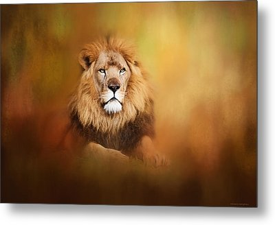 Lion - Pride Of Africa I - Tribute To Cecil Metal Print