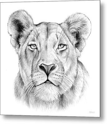 Lioness Metal Print by Greg Joens