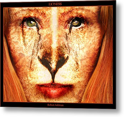 Lioness Metal Print by Robert  Adelman