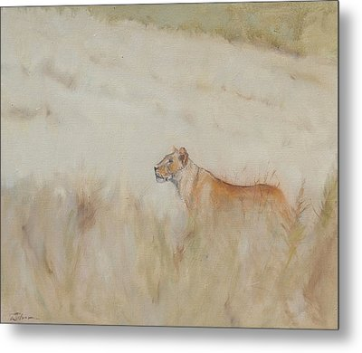 Lioness - Scent Ahead Metal Print by Ron Wilson
