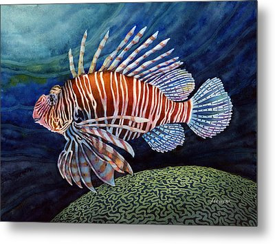 Lionfish Metal Print by Hailey E Herrera