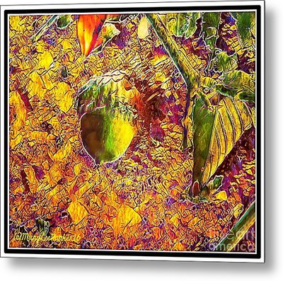 Little Acorn Metal Print