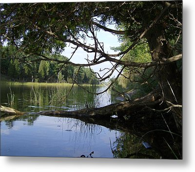 Little Ausable River Metal Print by Bruce Ritchie