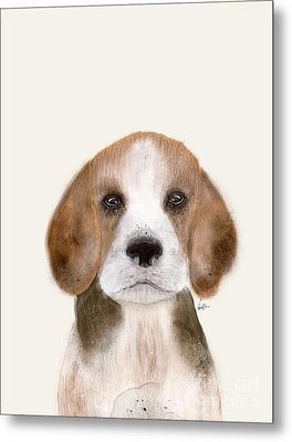 Metal Print featuring the painting Little Beagle by Bri B