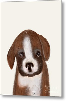 Metal Print featuring the painting Little Boxer by Bri B