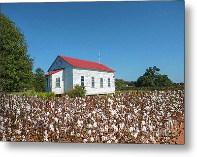 Metal Print featuring the photograph Little Church In The Cotton Field by Bonnie Barry