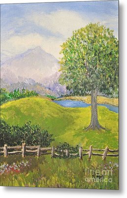 Little Country Scene Too Metal Print by Reb Frost