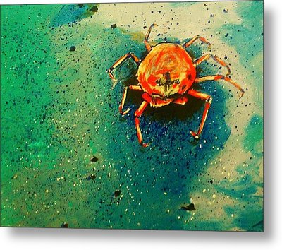 Little Crab Metal Print by Heather  Gillmer