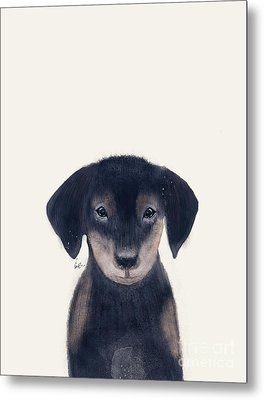 Metal Print featuring the painting Little Dachshund by Bri B