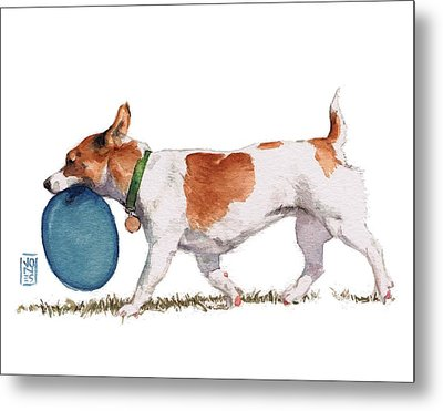 Little Dog With Blue Frisbee Metal Print by Debra Jones