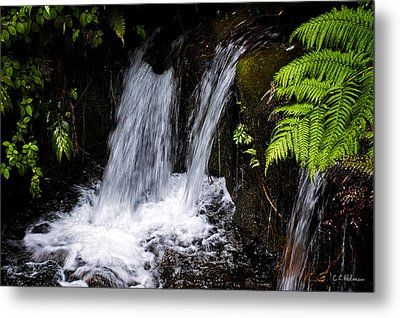 Little Falls Metal Print by Christopher Holmes
