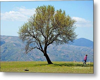 Little Girl Walking Past A Tree In Springtime Metal Print by Sami Sarkis