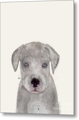 Metal Print featuring the painting Little Great Dane by Bri B