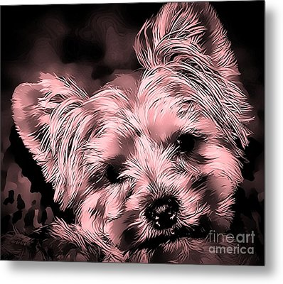 Metal Print featuring the photograph Little Powder Puff by Kathy Tarochione