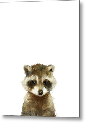 Little Raccoon Metal Print by Amy Hamilton