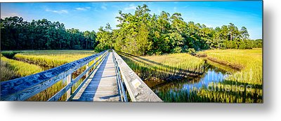 Little River Marsh Metal Print by David Smith
