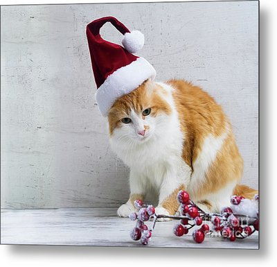 Little Santa Helper II Metal Print by Anastasy Yarmolovich