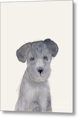 Metal Print featuring the painting Little Schnauzer by Bri B