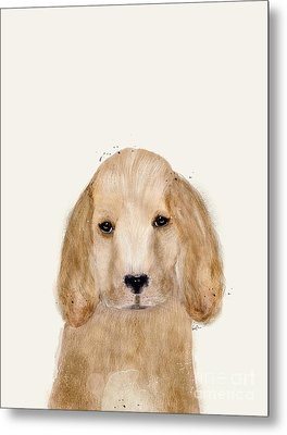Metal Print featuring the painting Little Spaniel by Bri B