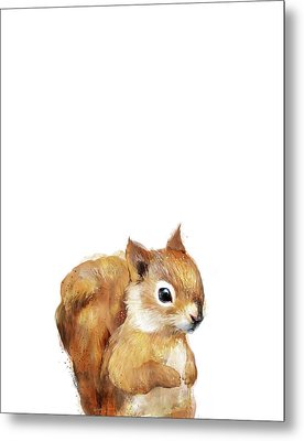 Little Squirrel Metal Print by Amy Hamilton