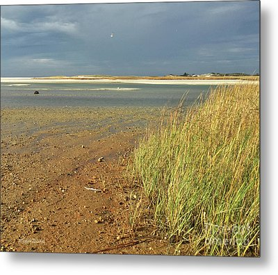 Metal Print featuring the photograph Live Each Day by Michelle Wiarda