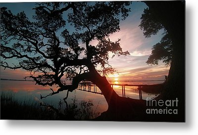 Metal Print featuring the photograph Live Oak Sunrise by Benanne Stiens