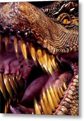 Lizard King Metal Print by Kelley King