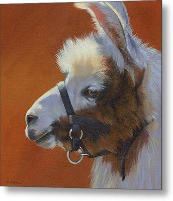 Llama Love Metal Print