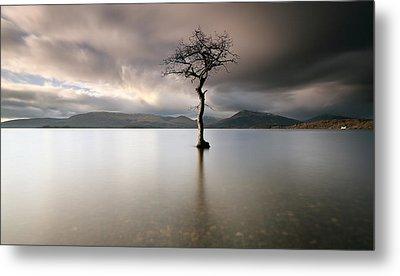 Loch Lomond Lone Tree Metal Print by Grant Glendinning