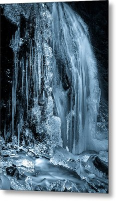 Locked In Ice Metal Print