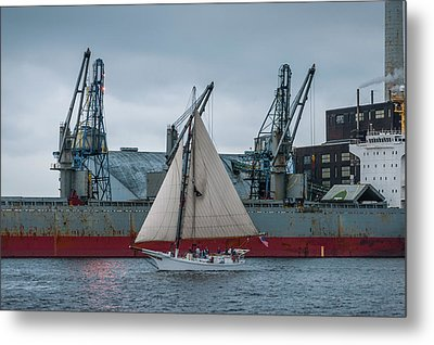 Locust Point Sailing Metal Print