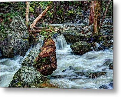 Log In Bridalveil Creek In Yosemite Metal Print