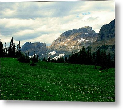 Logan's Pass Metal Print