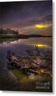 Logging Out Metal Print by Marvin Spates