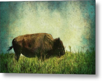 Lone Bison On The Prairie Metal Print by Ann Powell
