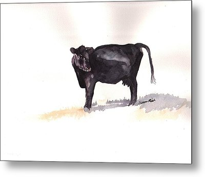 Lone Black Angus Metal Print by Sharon Mick