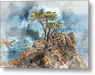 Lone Cypress In Monterey California Metal Print
