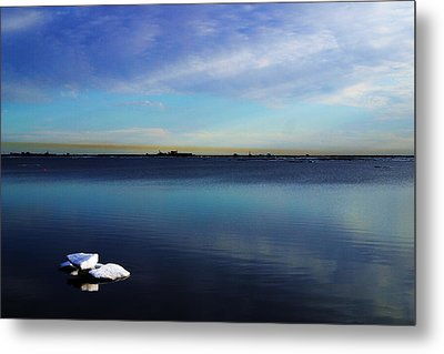 Lone Ice Metal Print by Anthony Jones