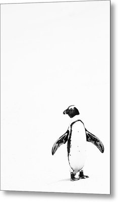 Lone Penguin Metal Print by Victoria Hillman