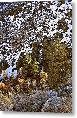 Metal Print featuring the painting Lone Pine Creek Sunset by Larry Darnell