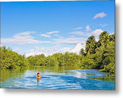 Metal Print featuring the photograph Lone Swimmer by Kim Wilson